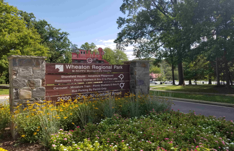 fun things to do in silver spring wheaton regional park